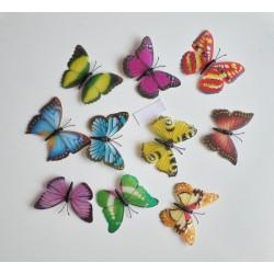 3D Színes mágneses pillangó csomag - pillangó dobozban