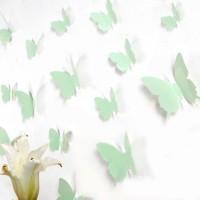 3D Pisztácia pillangó csomag