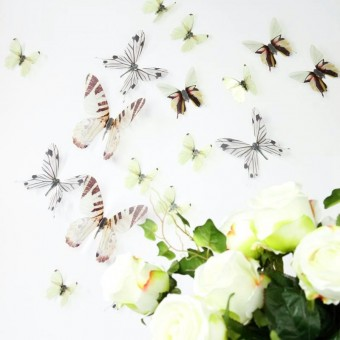 3D Élethű pillangó csomag - Áttetsző Fehér