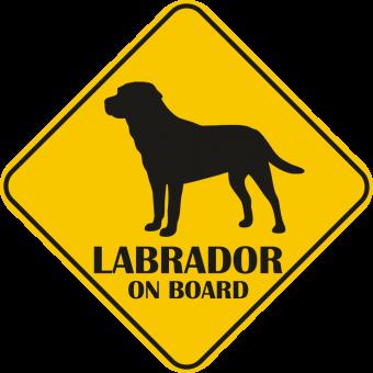 Autós matrica - Labrador