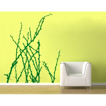Rostlina s trny