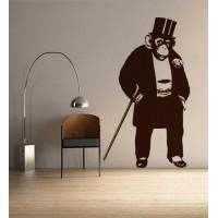 Elegáns majom