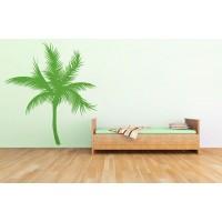 Egzotikus pálmafa