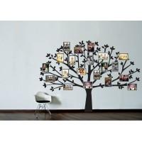 A család fája