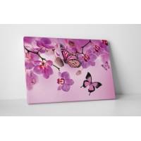 Rózsaszín pillangók
