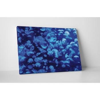 Kék medúzák