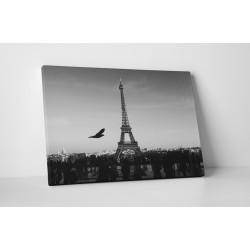Fekete-fehér Eiffel torony