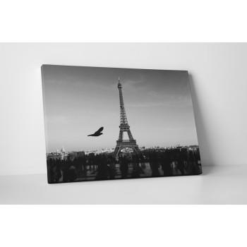 Eiffelova věž v černobílém provedení