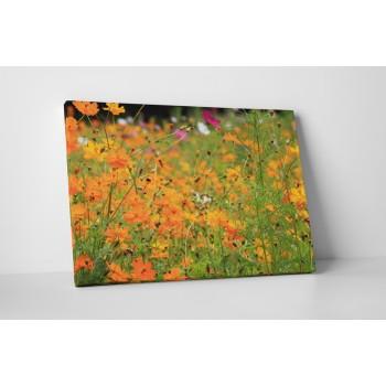 Narancs színű virágok - 50x65 cm - AKCIÓ!