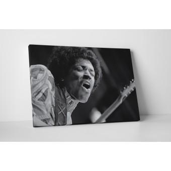 Jimi Hendrix vászonkép