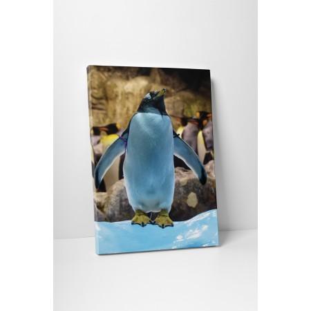 Játékos pingvin