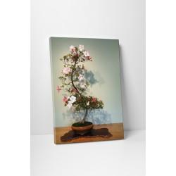 Virágzó bonsai fácska
