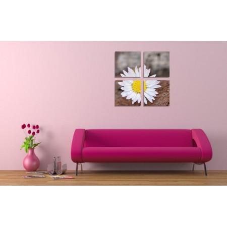 Többrészes vászonkép - Kamilla virág