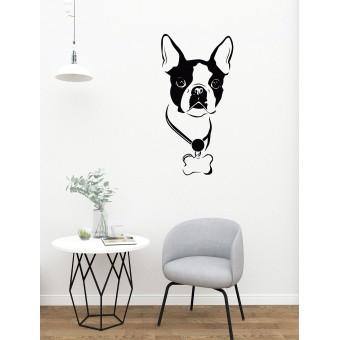 Kölyök kutya