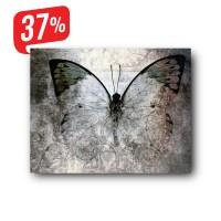 Pillangó - Vászonkép- 30x40 cm