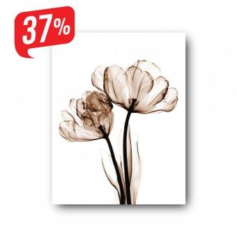 Akvarell virág - Vászonkép - 30x40 cm