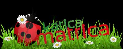 KaticaMatrica.hu - Minőségi falmatrica és vászonkép webáruház