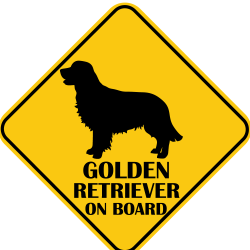 Autós matrica - Golden Retriever