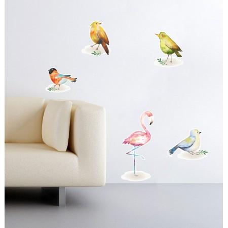 Színes madarak - Színes matrica csomag