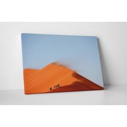 A sivatagban