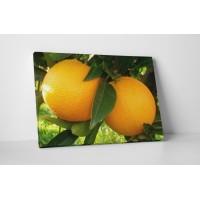 Narancsok